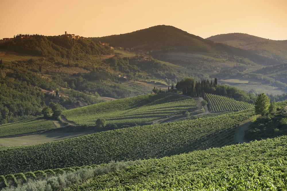 Il paesaggio di Radda in Chianti