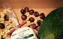 Farina di castagne della Lunigiana DOP