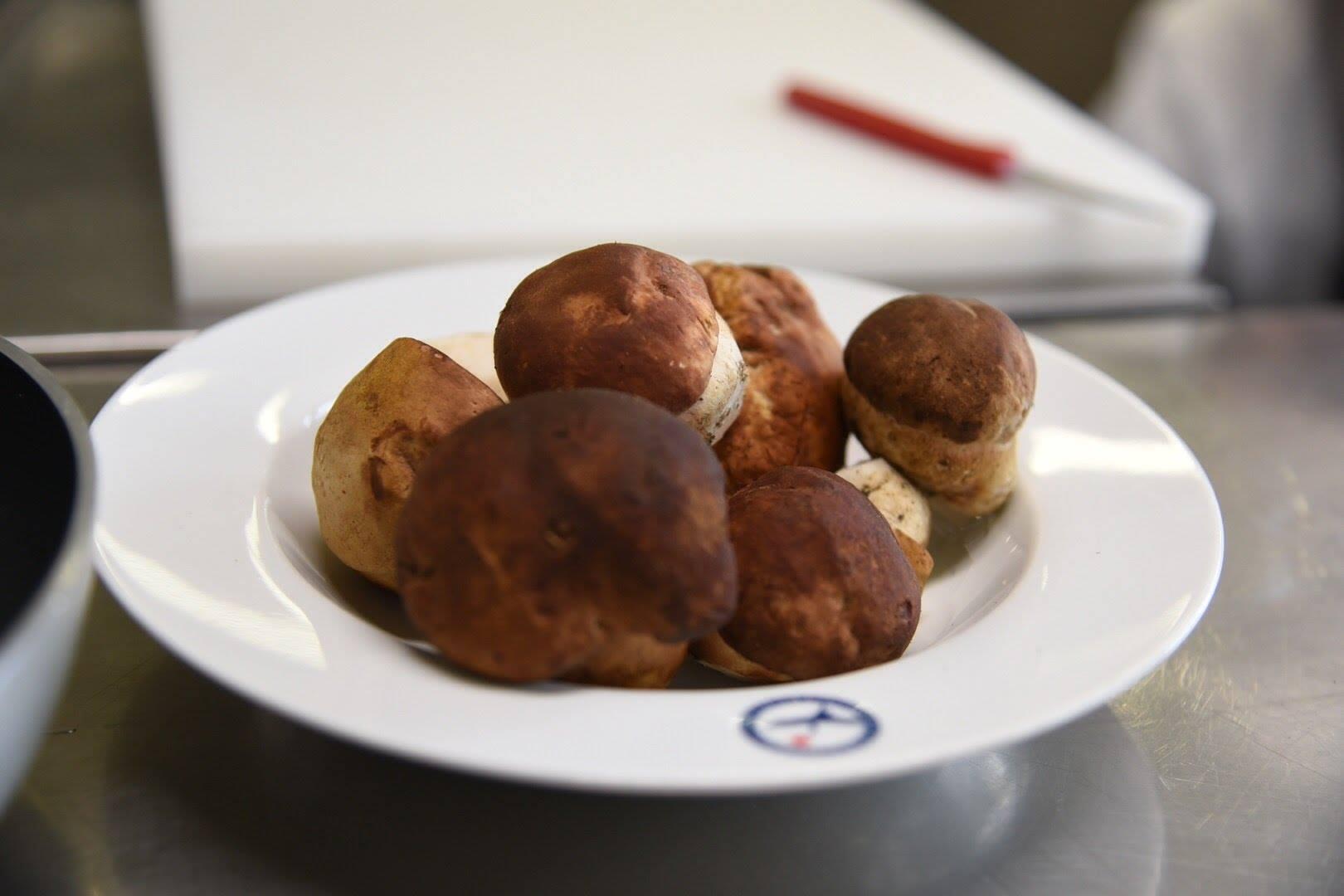 Funghi porcini della Toscana