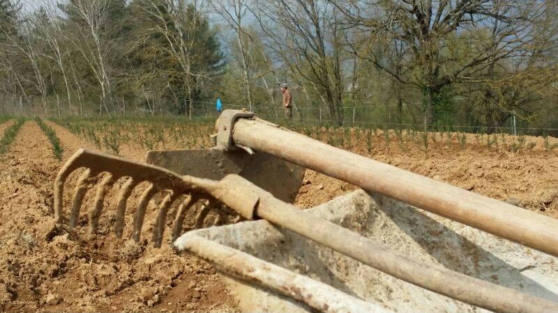 preparazione dei terreni