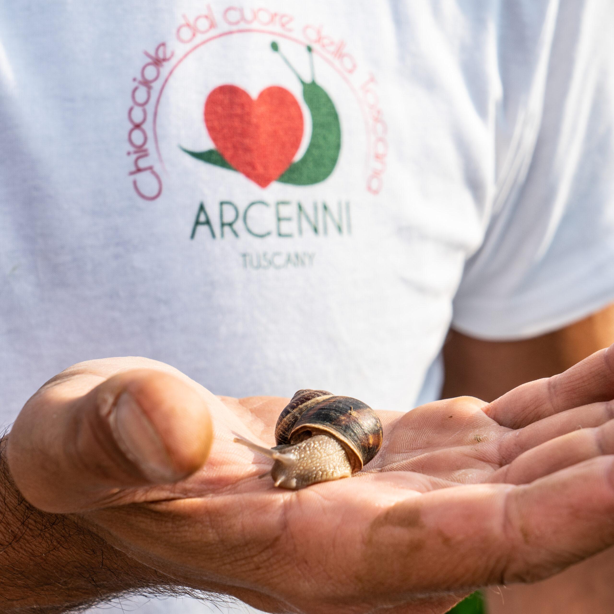 Chiocciole dal Cuore della Toscana