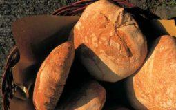 Pane di Po Signano e Agnino