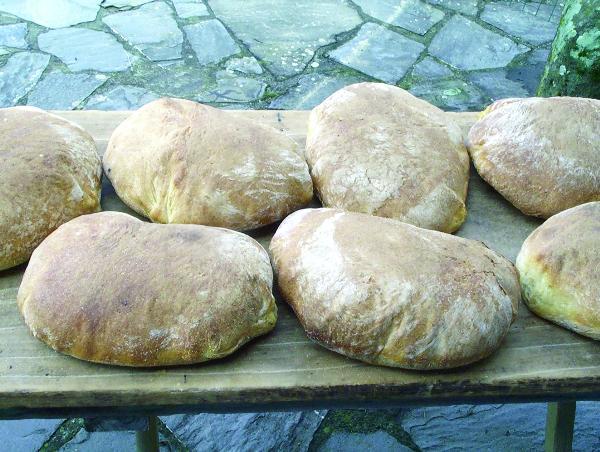 Pane di Regnano