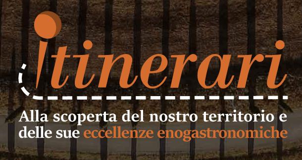 Itinerari Vetrina Toscana nelle Terre di Pisa