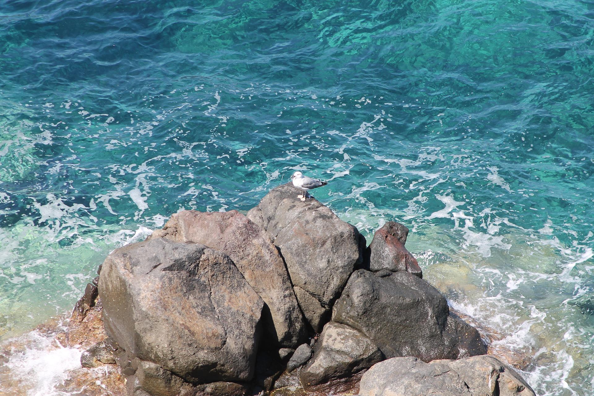 Isola di Capraia, Arcipelago Toscano