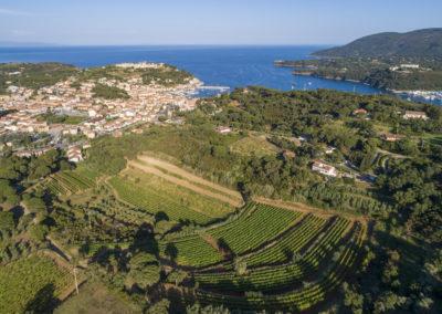 Foto aerea dell'Azienda Agricola Arrighi, Isola d'Elba