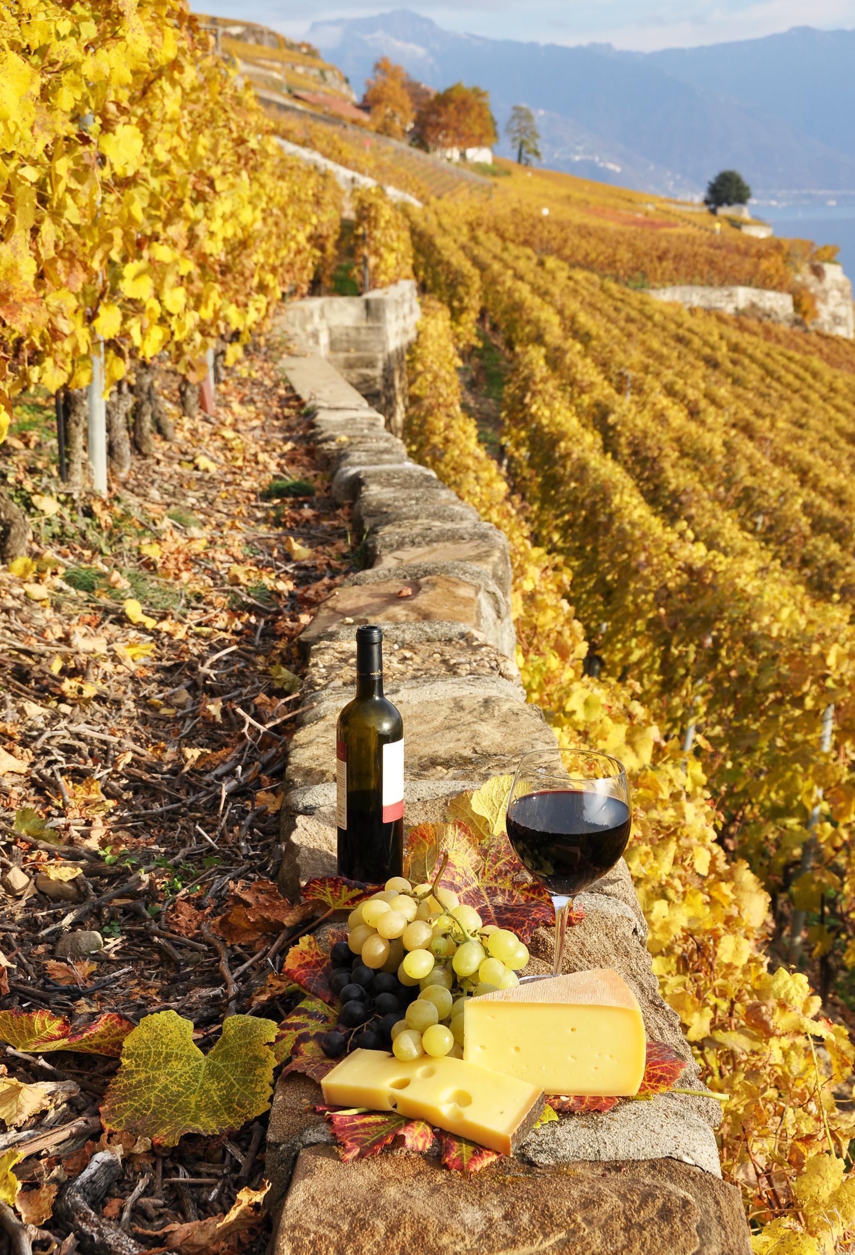 Prodotti tipici e vino della Toscana