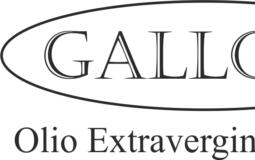 logo galloni