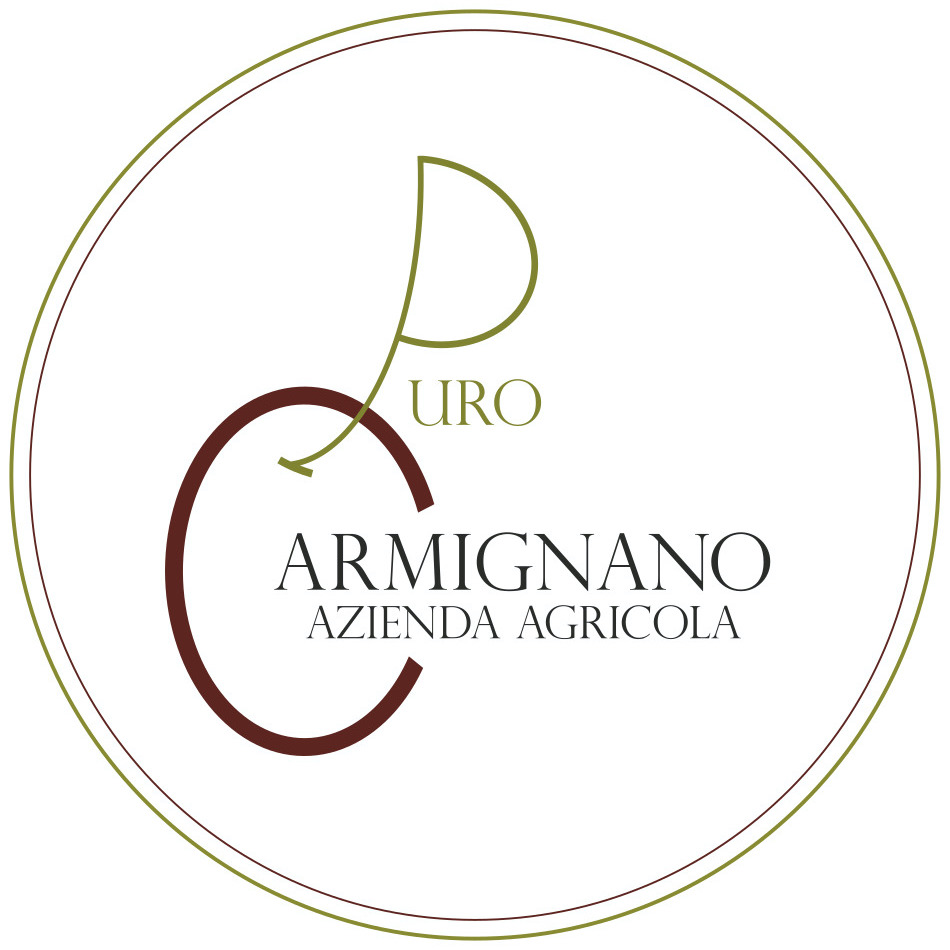 LOGO-PURO-CARMIGNANO