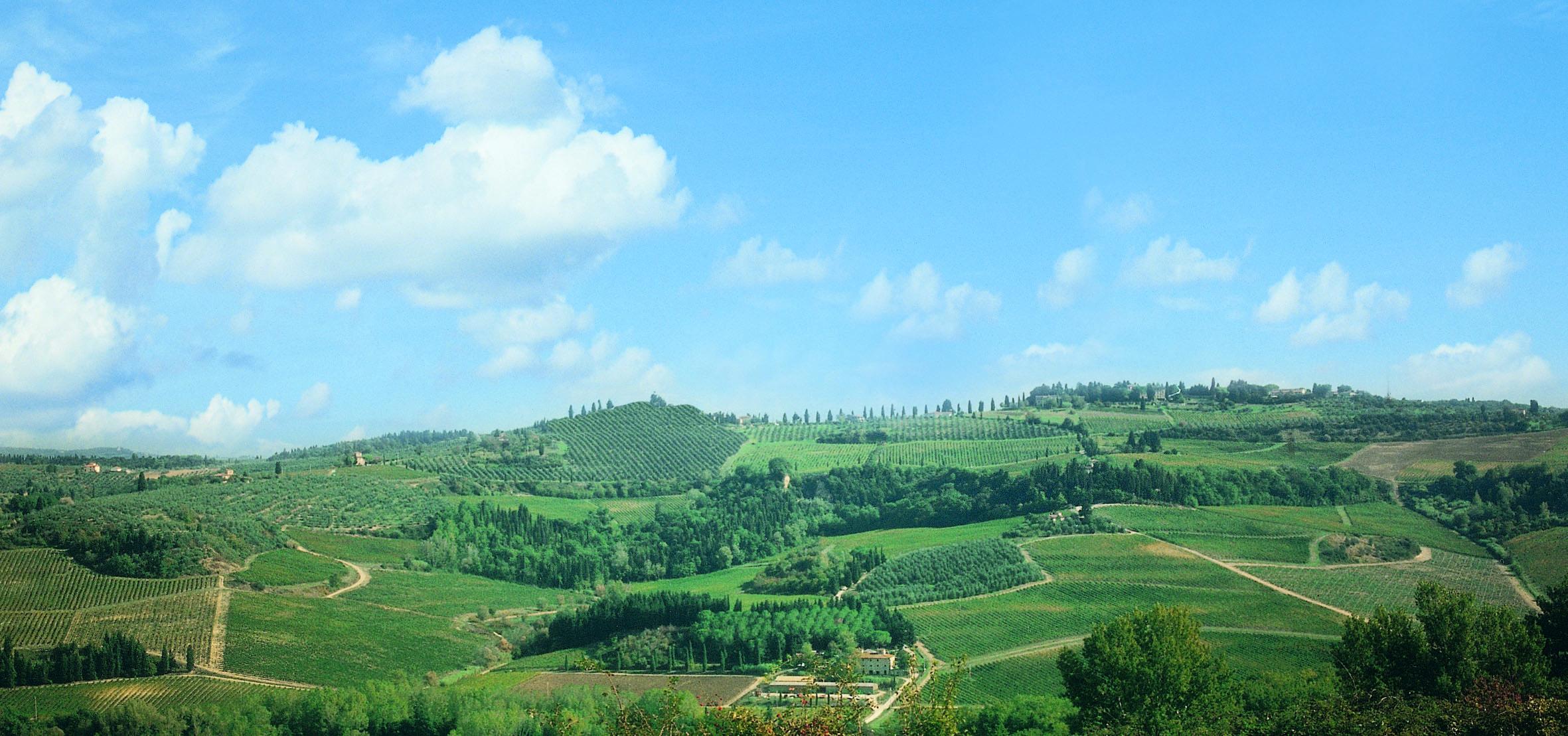 Turismo esperienziale sulle Strade del Vino di Toscana: è online il portale di prenotazione delle attività turistiche della Toscana