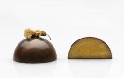 I cioccolatini di Paola Francesca Bertani