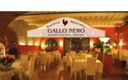 GALLONERO-ec4bb331